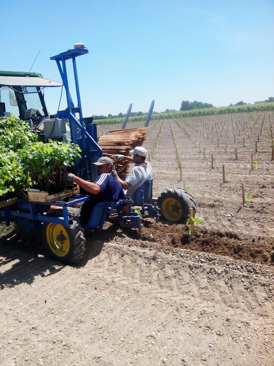 maquina plantadora