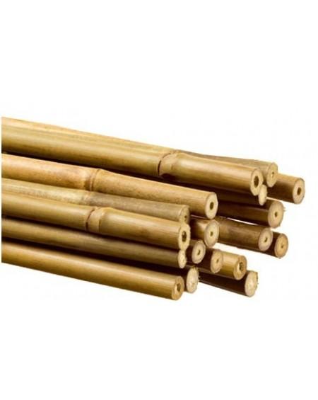 Tutores de bambu  1,80m  22-24mm