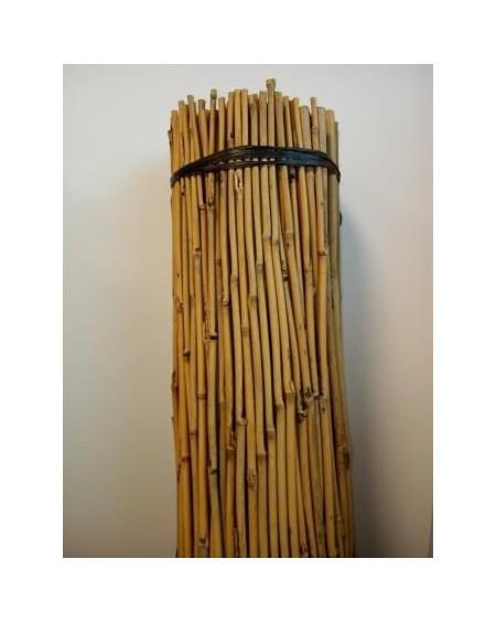 Tutores de bambu