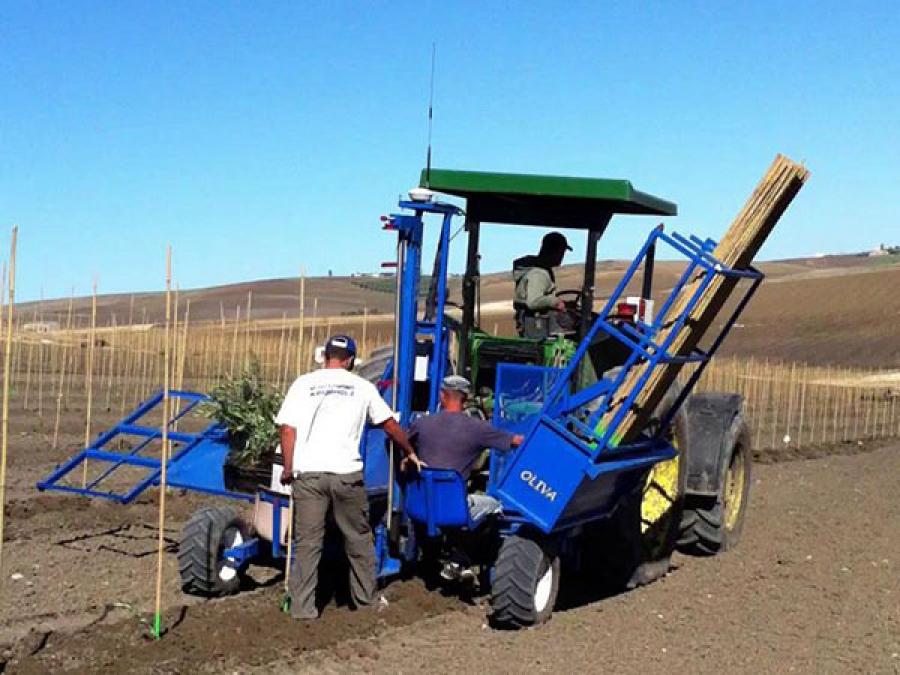 maquina de plantar